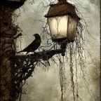 La casa del crepuscolo/The twilight house (II)