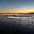 Laguna di Grado, durante la bassa marea, dic. 2019
